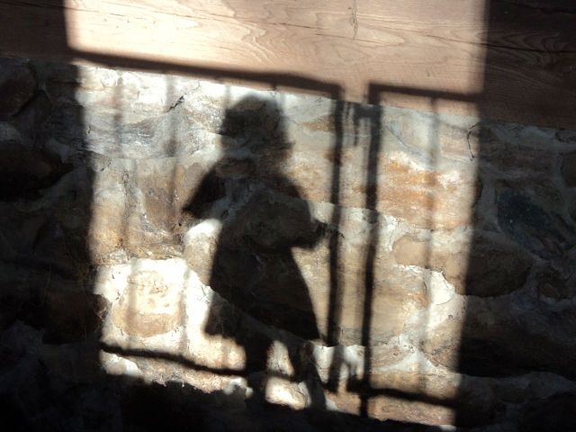 Shadows at Muscoot Farm